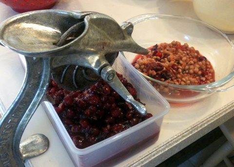 pitting cherries 2-002