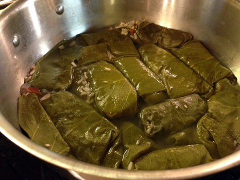 Stuffed Grape Leaves in Pot Uncovered
