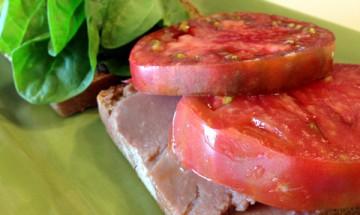 Refried Bean and Veggie Sandwiches