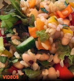 Vegan plant-based Recipe Videos Garden Dish